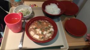 一日目の夕食は麻婆丼